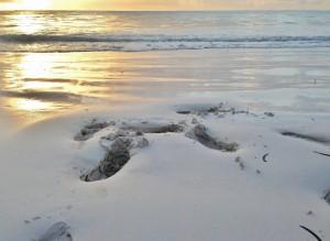 片栗粉のような粒子の細かい真っ白い砂浜